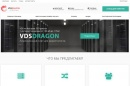VDS DRAGON, хостер компания